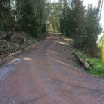 Geförderter Waldweg
